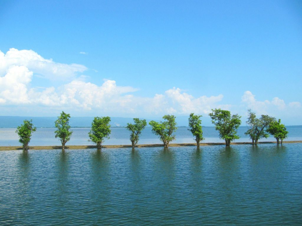 Breathtaking Tanguar Haor blue lake and sky, trees are middle of the lake and huge white cloud in the sky