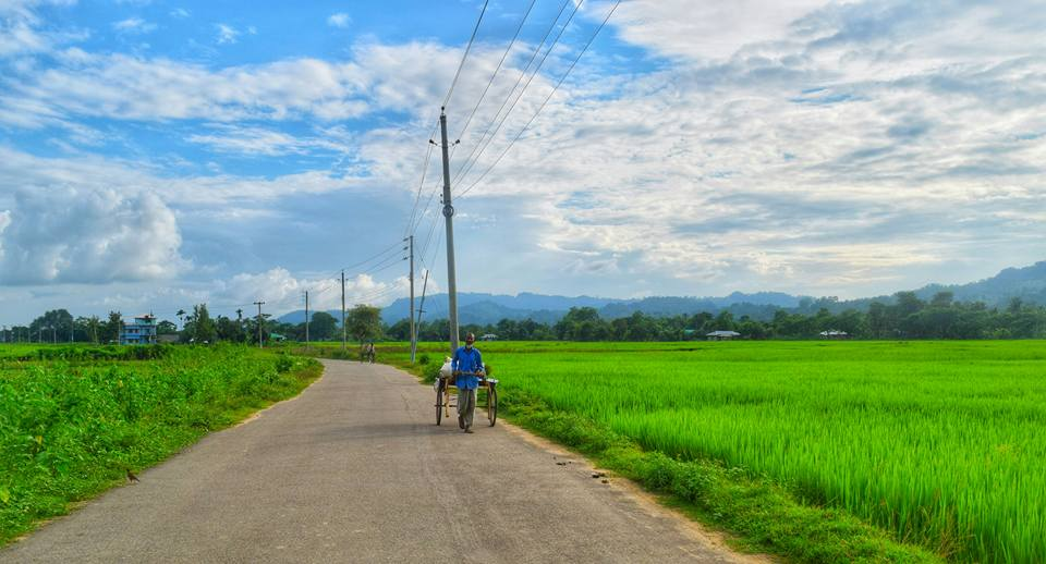 Beautiful New Zealand Para in Bangladesh. Green field , blue sky and white clouds. A person running van on the road.