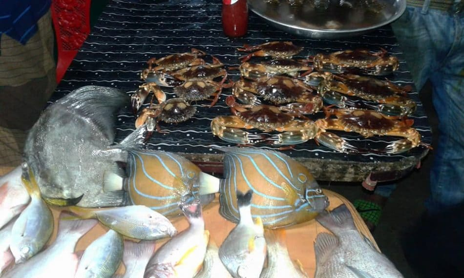 Various Sea fish in Saint Martin ready to sell.